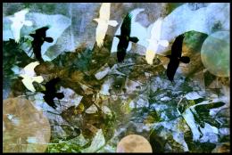 Screen Shot 04-14-15 at 08.50 AM
